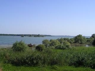 Lac du Der | Lac du Der | JMHNK | Flickr