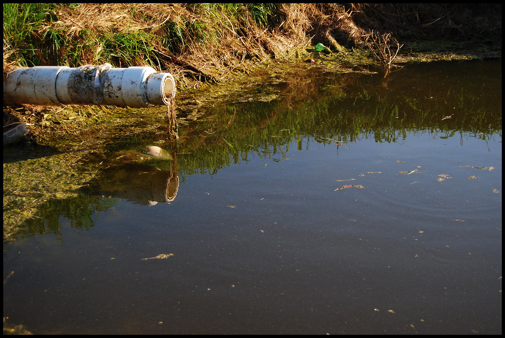 20091031 Polluted Lake Dave Morales Flickr