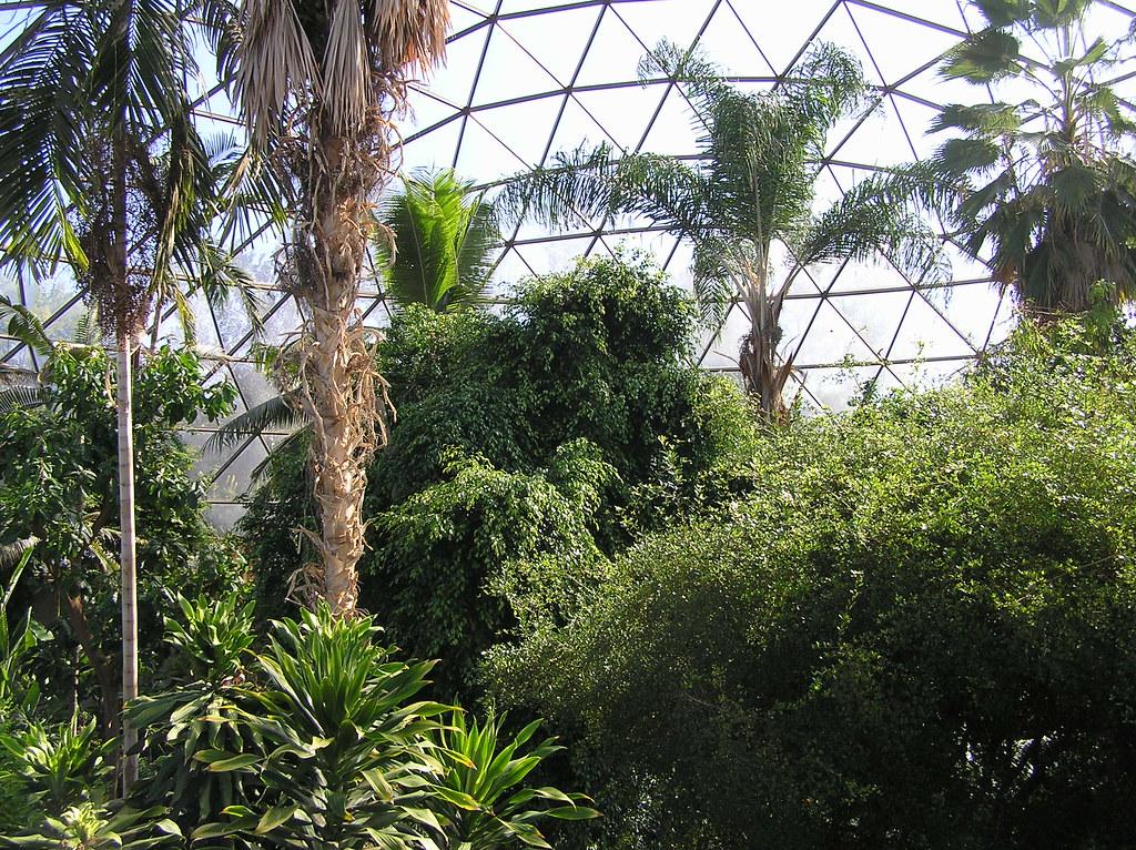 P Jpg Inside The Des Moines Botanical Gardens