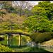 Rikugien Gardens view