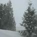 Snowstorm March 2008