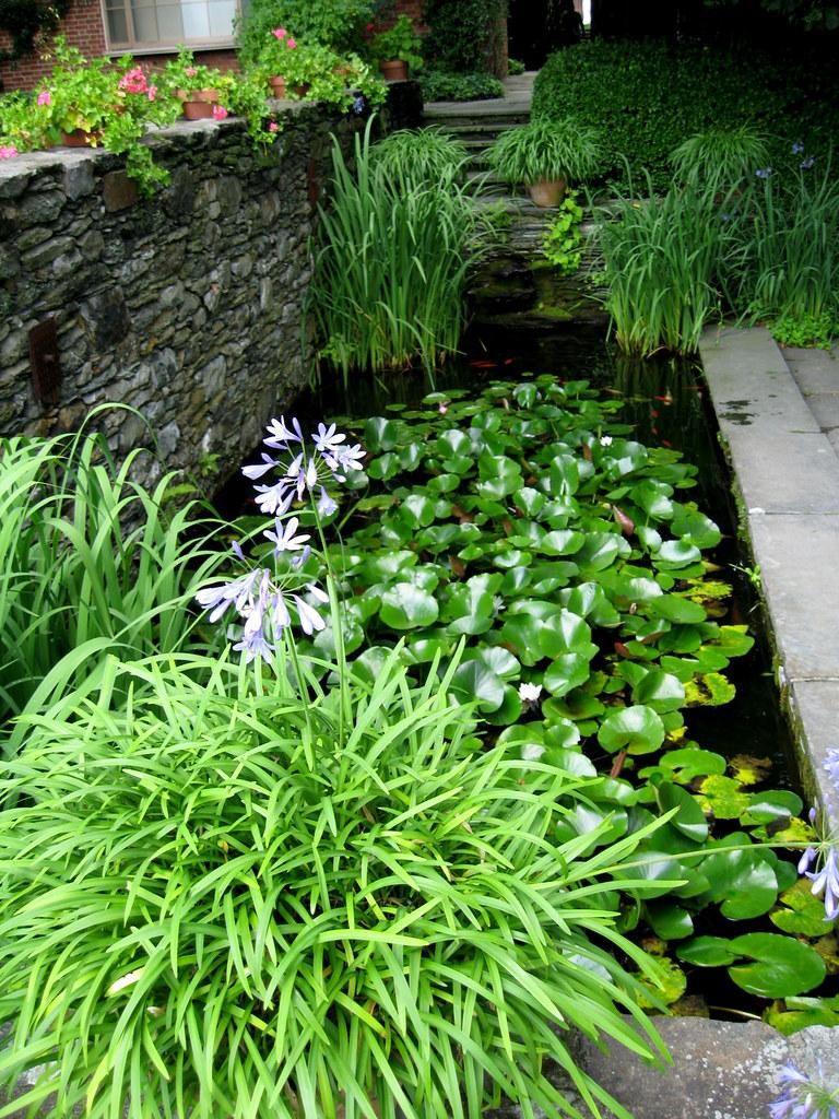 Rectangular Garden Pond | By Pandorea.