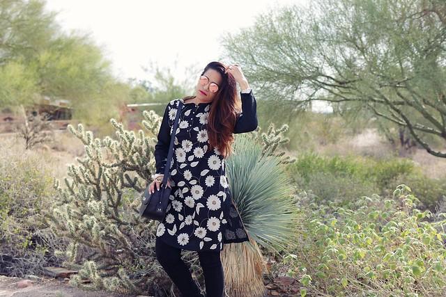 Taliesin West Phoenix Tanvii.com 5