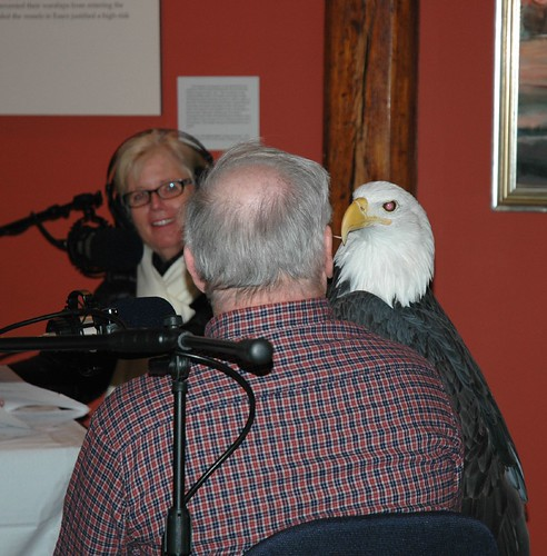 Eagle Festival 2008 | by WNPR - Connecticut Public Radio
