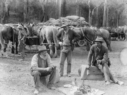 Meal break for teamsters and horses | by Powerhouse Museum Collection