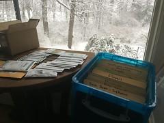 seed sorting  IMG_0126