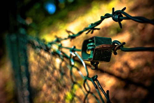 coloured barbwire | by MoreThanOneView