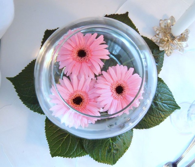 Centerpiece gerbera pink floating anne anderson flickr for Floating flowers in water