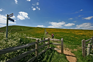 Coastal Path - Walk the Wight #6 | by s0ulsurfing
