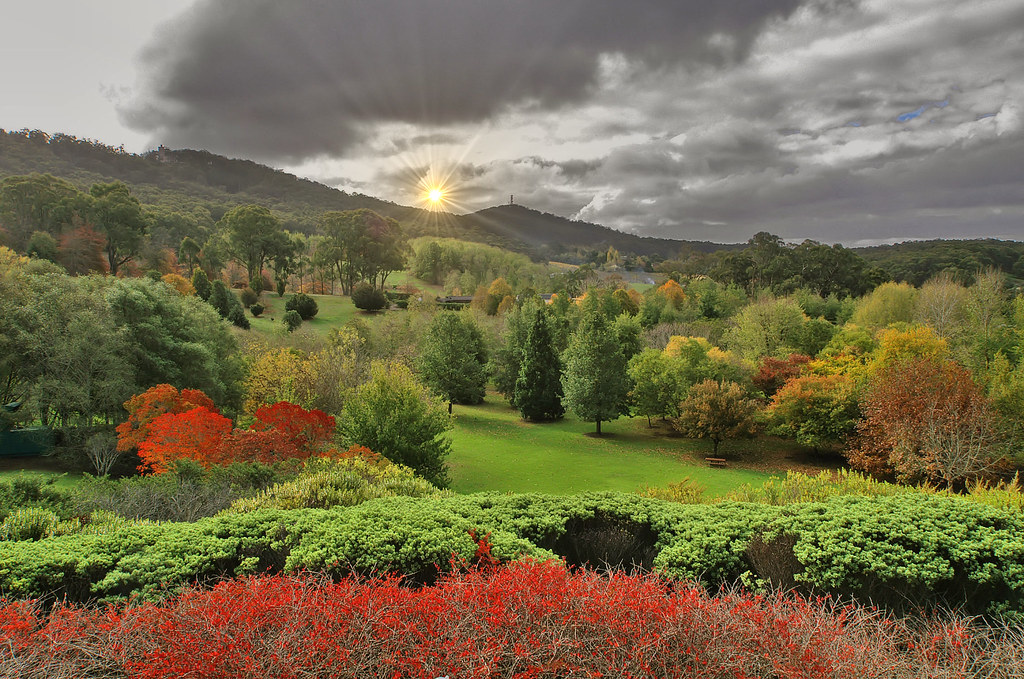 Mt lofty botanic gardens shades of autumn for Adelaide hills landscape