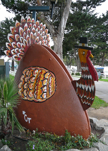pismo pavo | by lol-ita