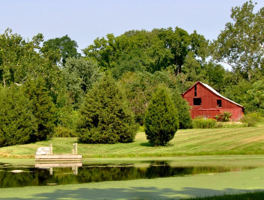 Country Pond & Barn | Country Pond & Barn | Judi Barr | Flickr