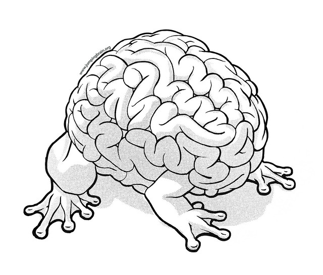Brain with frog legs