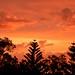 Australia Perth Sunset New Years Day 2008