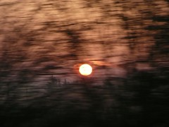 Sunrise from the train | by Theo Graham-Brown