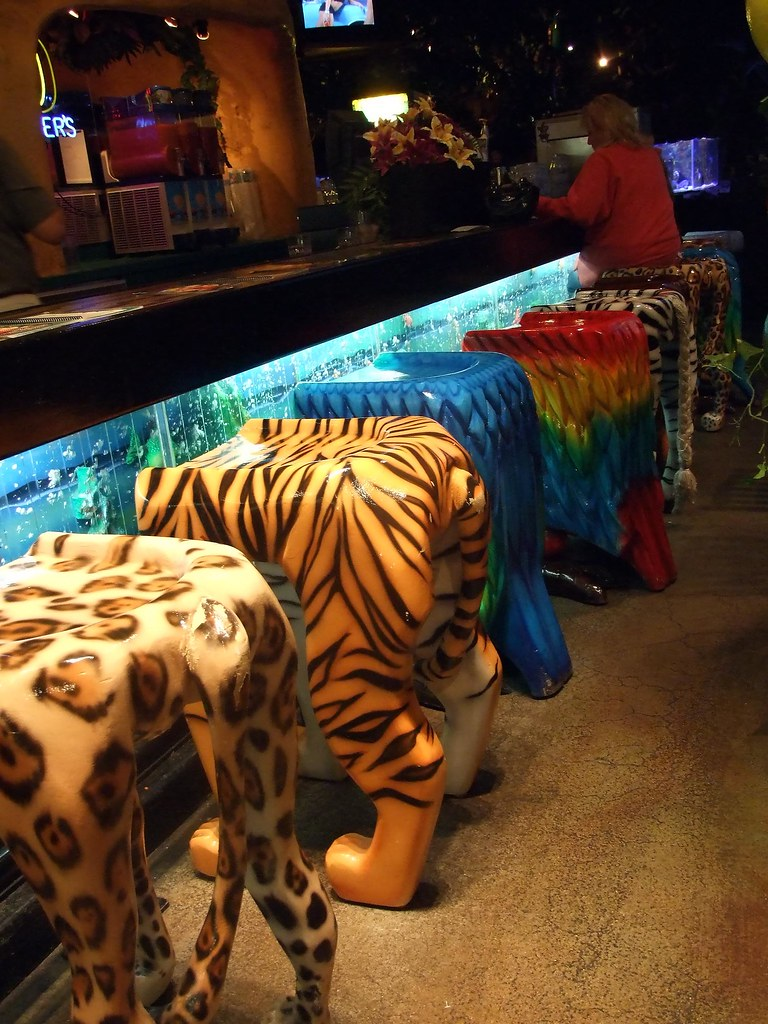 Animal Bar Stools Colleeninhawaii Flickr