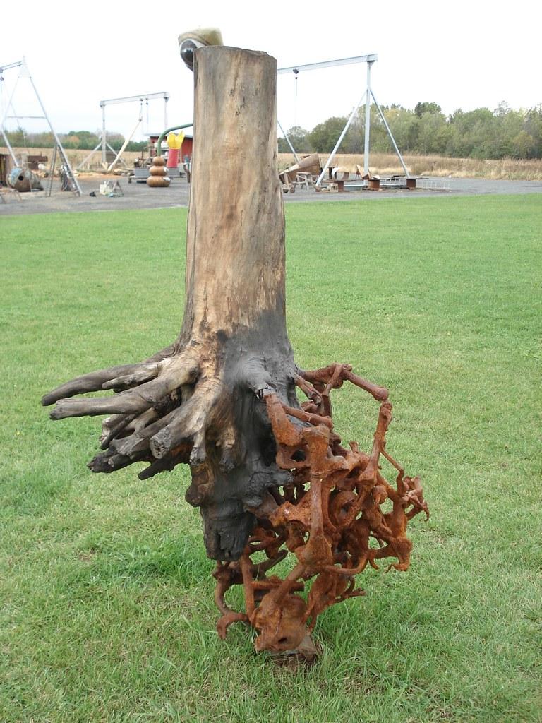 Trees Have Bones For Roots By Araan Schmidt Franconia