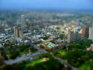 Sydney, tilt-shifted | by Becky E
