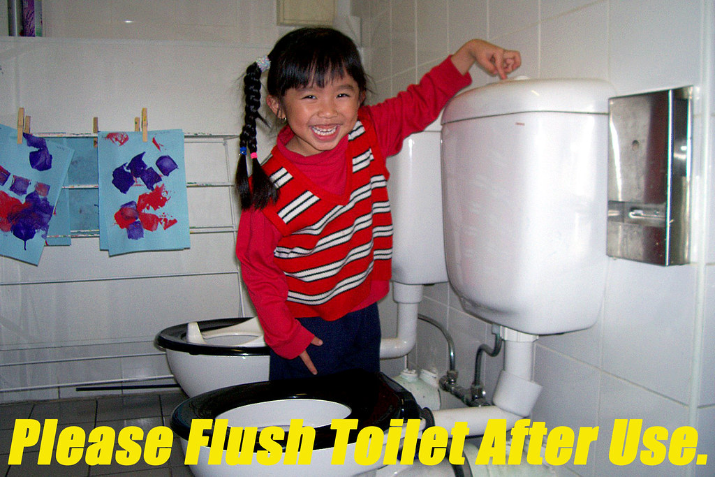 Please Flush Toilet After Use As A Educational Poster In