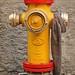 Keeping The Hydrant Warm.