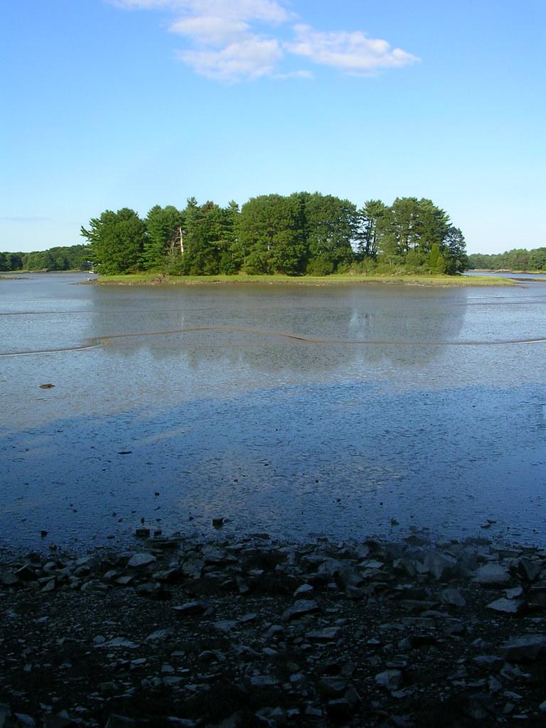 Spruce creek online
