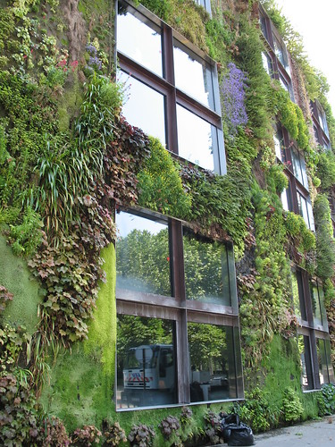 Plants On Building In Paris Museum With Plants Growing