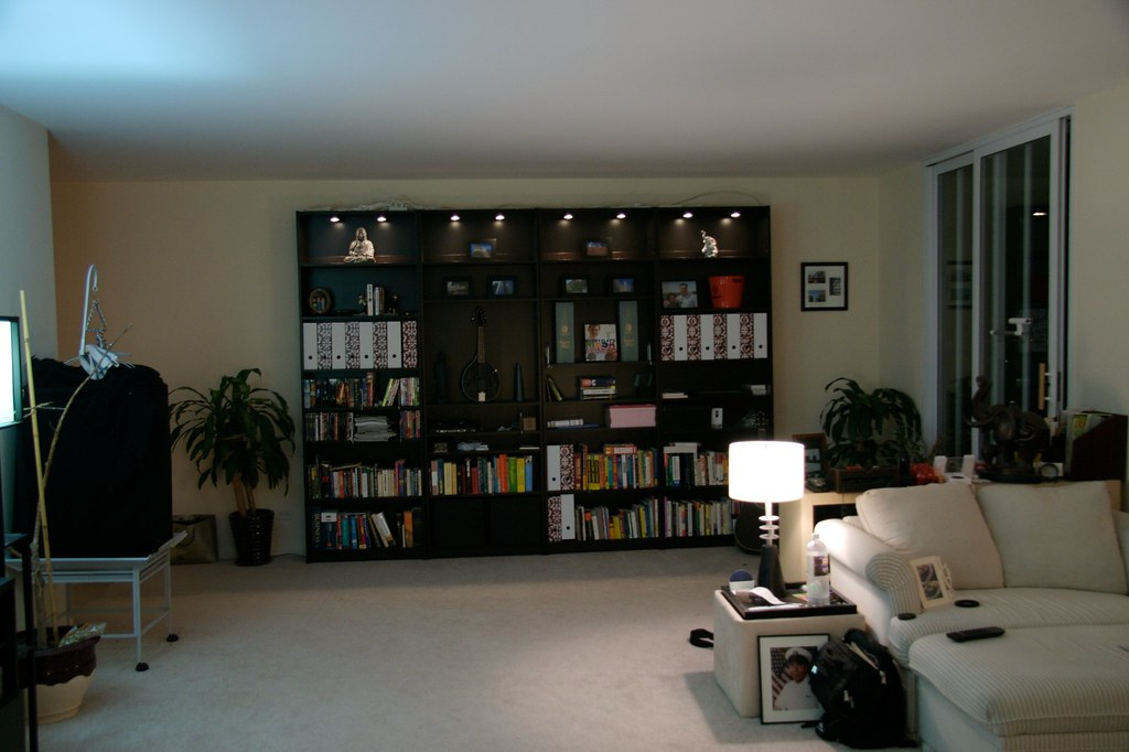 Picture Shelf Living Room