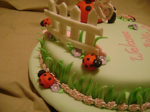 how to take care of a ladybug