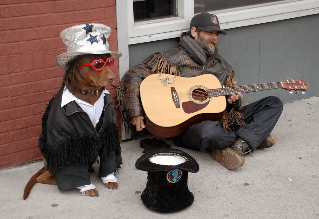 Dude and his dressed up dog playing guitar on the streets ...