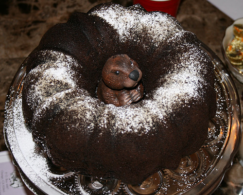 Groundhog Day cake (with shadow) | Lisa's annual Groundhog D ...