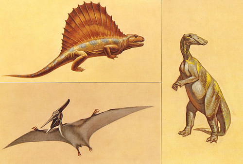 Prehistoric Animals Flash Cards | by Neato Coolville
