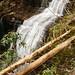 Falls Downstream of Lower DeSoto Falls