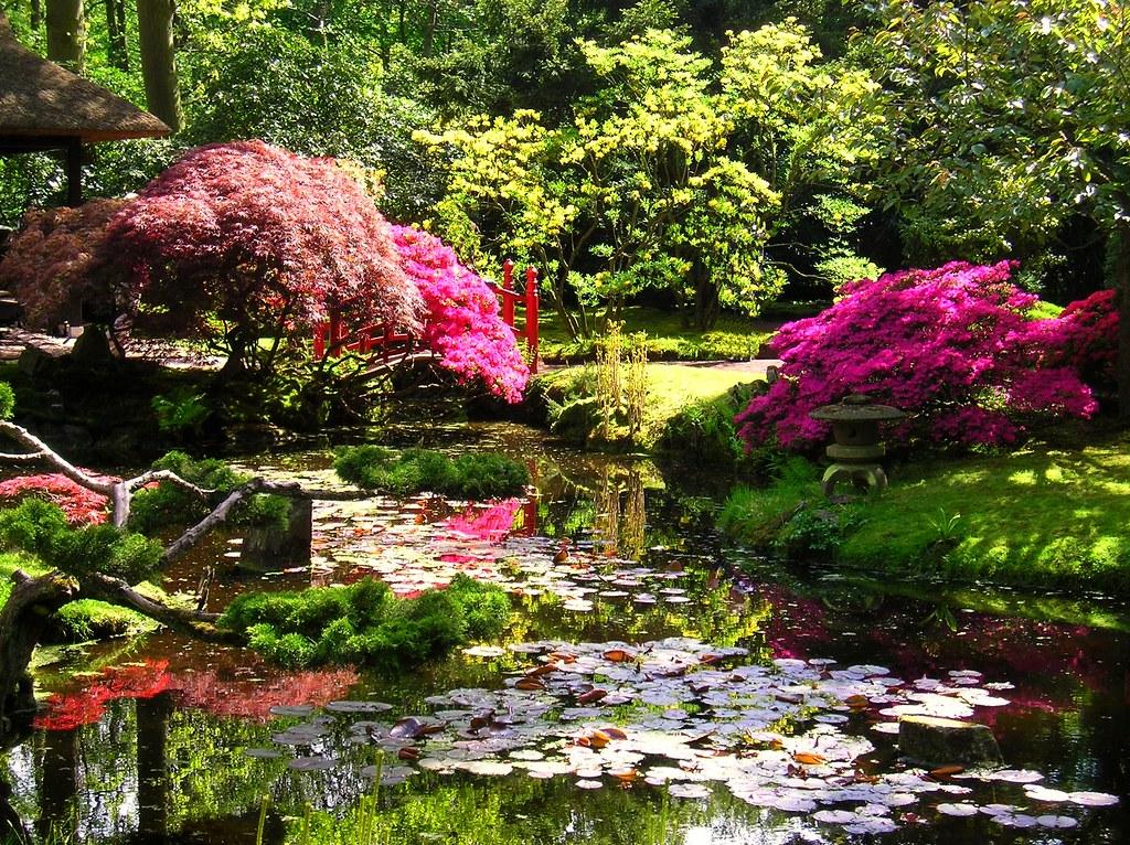 De japanse tuin clingendael in het begin van de 20e for Laghetto giapponese