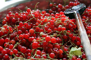 red currants | by David Lebovitz