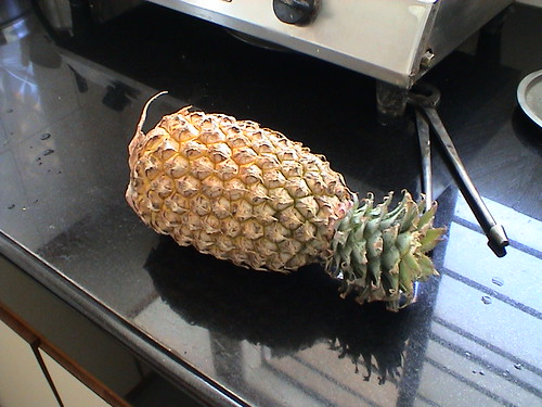 Free porn pineapple