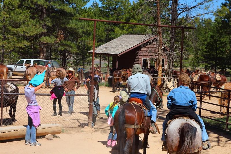 IMG_5007 Mule Ride