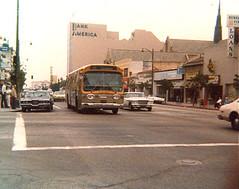 Buses A Set On Flickr