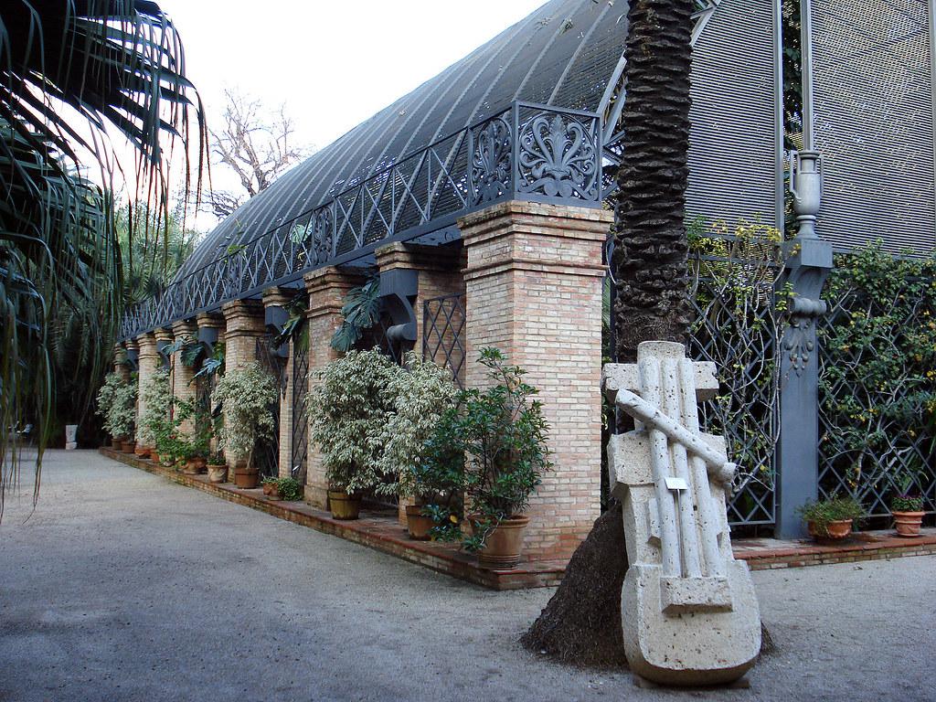Valencia jard n bot nico a k a el zoologico de rboles - Jardin botanico valencia ...