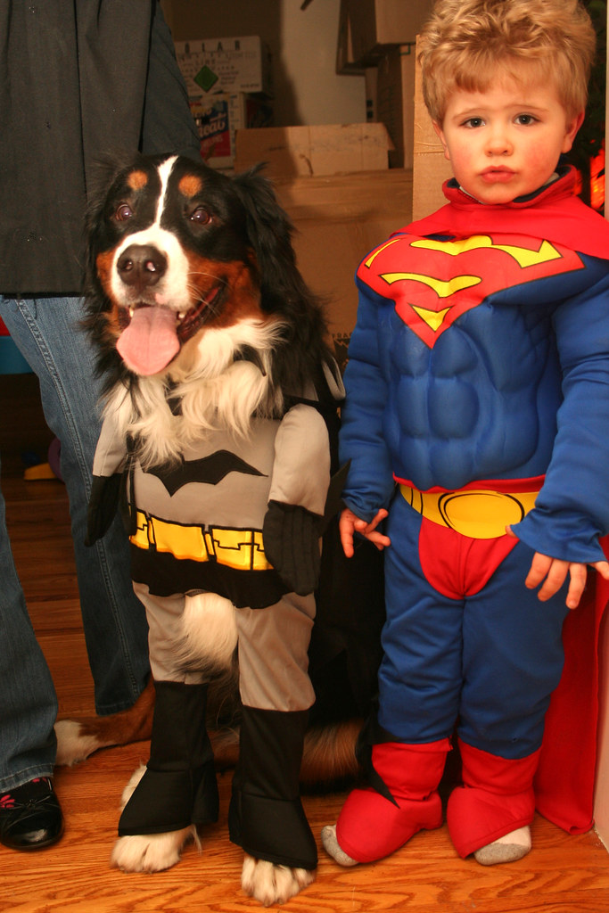 halloween costumes for children and dogs