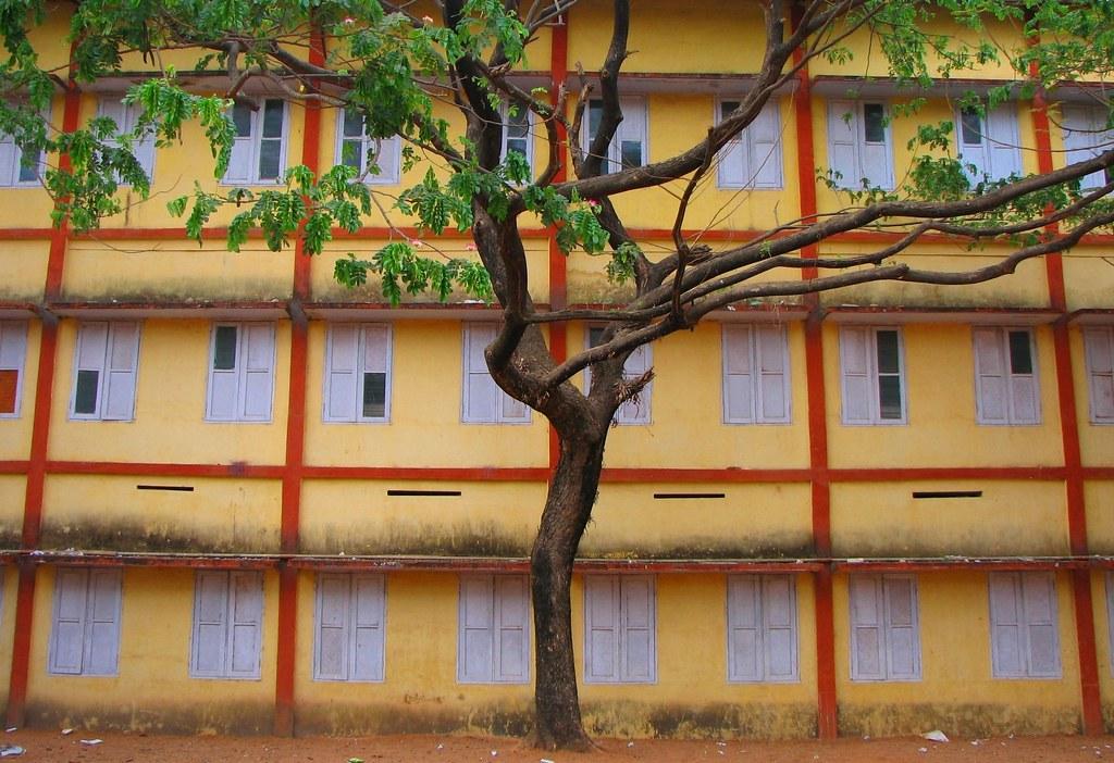 Bhavans Vidya Mandir Elamakkara Photos Bhavans Vidya Mandir g
