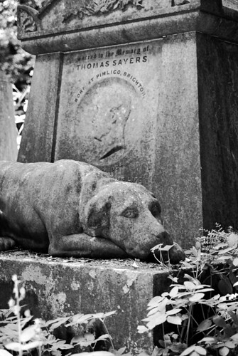 Highgate Cemetery. The tomb of Thomas Sayers, the boxer. The dog represents his pet, Lion. | by zigiella
