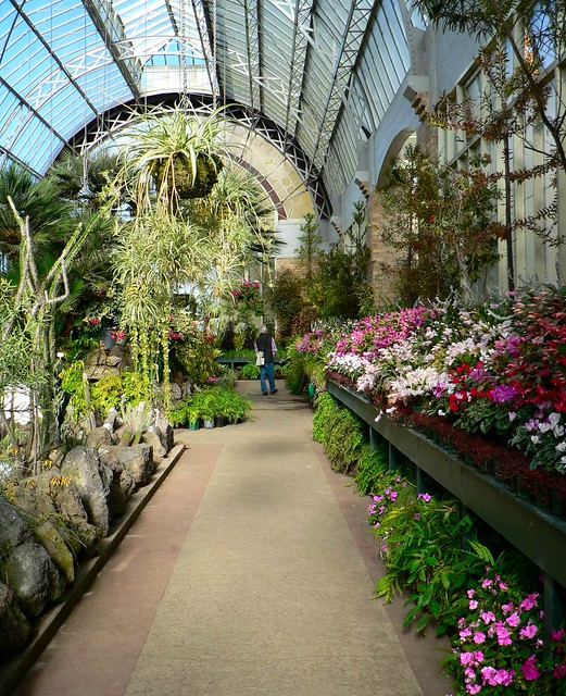 Domain Gardens Auckland New Zealand Winter Garden By