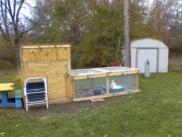 The new duck house and run from afar this is the new for Duck houses and runs