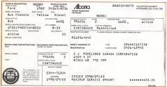 Car Insurance Copy