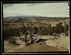 Landscape, Northeast Utah  (LOC) | by The Library of Congress