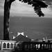 View from Alcatraz!