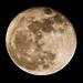 Very big moon