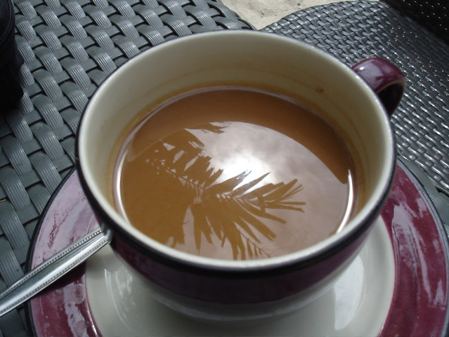 Image result for coffee sun