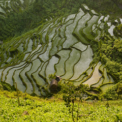 Terrace rice fields, Yunnan, China | by Eric Lafforgue