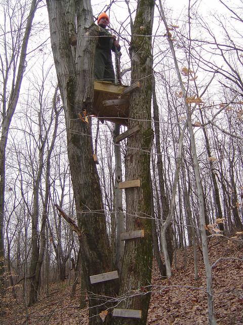 Building Wooden Ladder For Bunk Bed